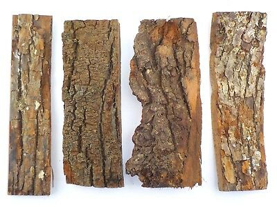 4 Tree Bark Pieces For Floristry, Model Making Diorama. Texture Rock Effect 1931 • 15.95£