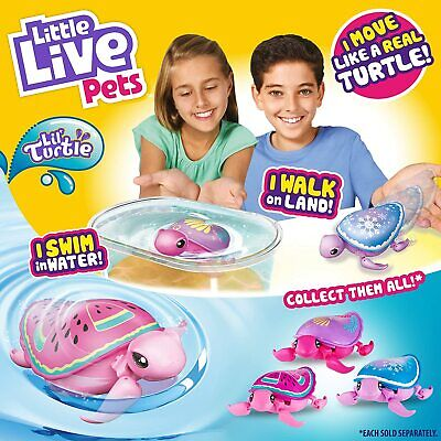 Little Live Pets - Lil Turtles - Swims In Water, Walks On Land • 12.99£