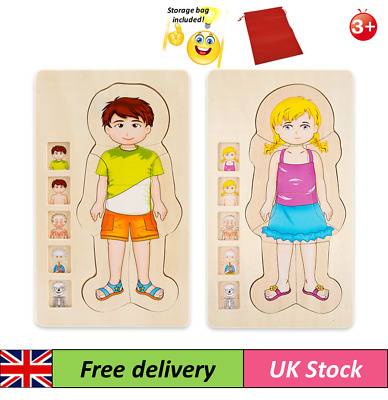 Wooden 3D Body Multi Layer Anatomy Puzzle Boy / Girl Early Educational Jigsaw • 12.99£