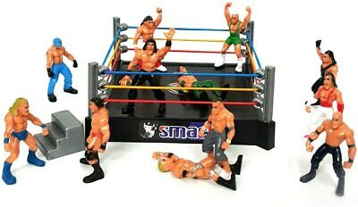 Wrestling Ring Bash WW Smack Down Fighting Ring With 12 Action Figures Toy Set • 9.99£
